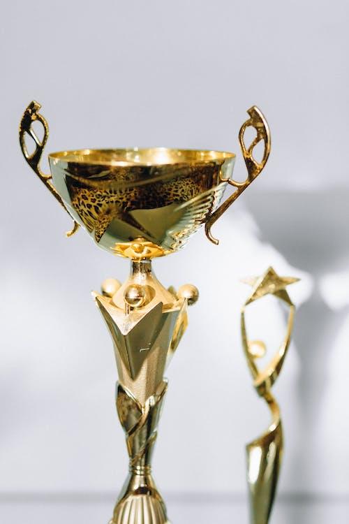 Free stock photo of achievement, athlete, award