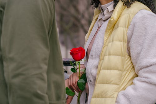 Crop anonymous loving couple with bright blooming red rose with green fresh leaves on blurred background