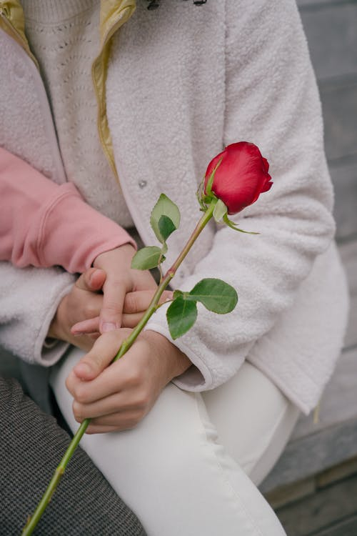 Crop couple with red rose