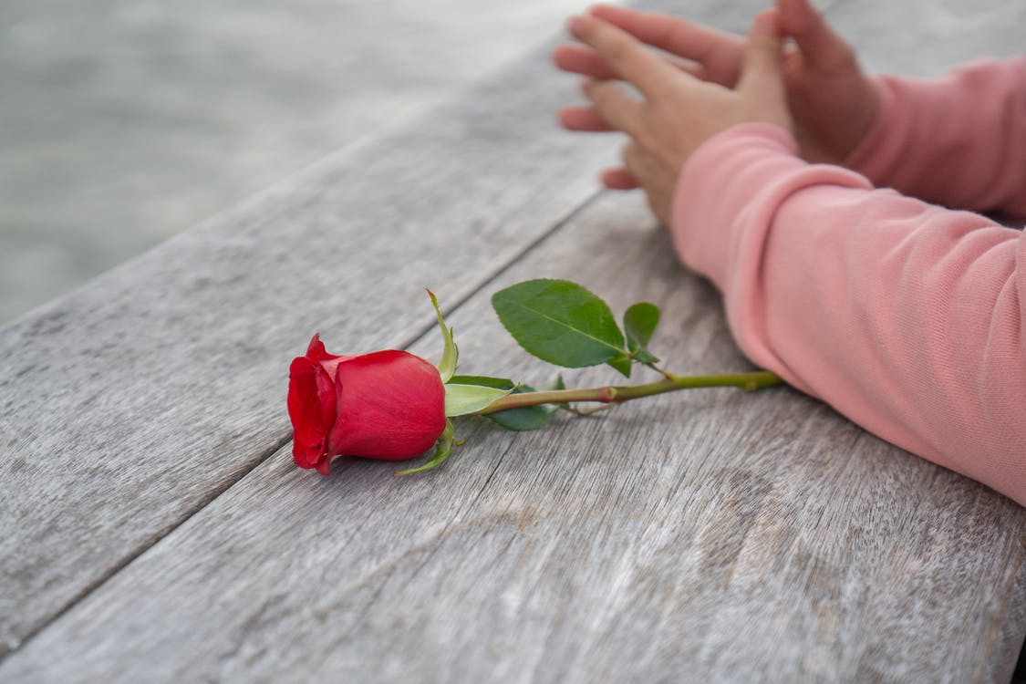 Crop faceless person with red rose leaning on wooden surface
