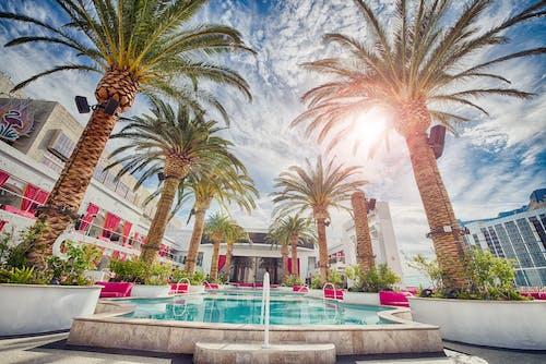 Gratis lagerfoto af ferie, feriested, hotel, Las Vegas