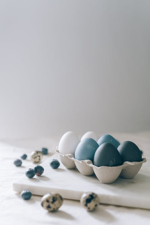 Δωρεάν στοκ φωτογραφιών με minimal, απλότητα, αυγά