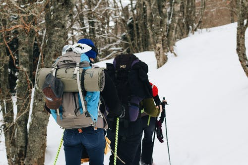Photos gratuites de actif, aventure, bois, escalader