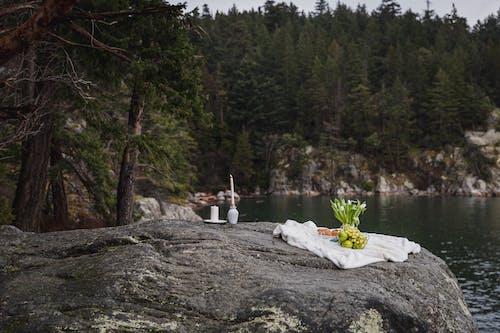 Fotos de stock gratuitas de actividad al aire libre, agua, al aire libre