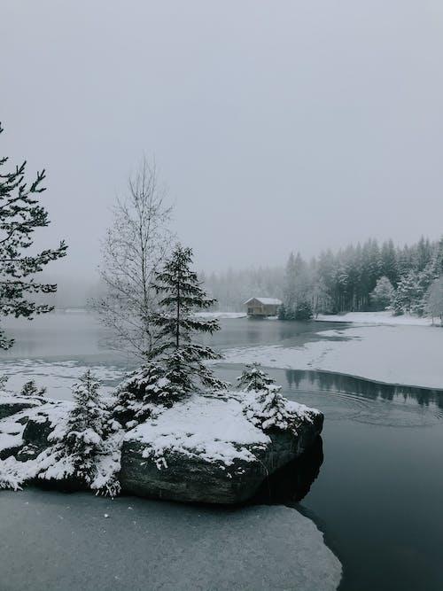 Δωρεάν στοκ φωτογραφιών με bäume, eis, gebirgssee