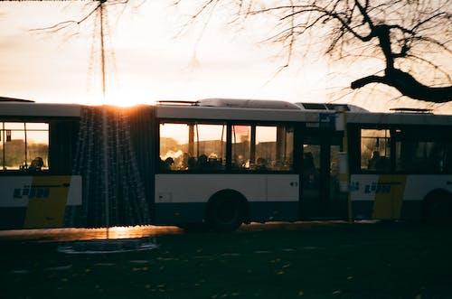 Modern bus driving on road at sundown