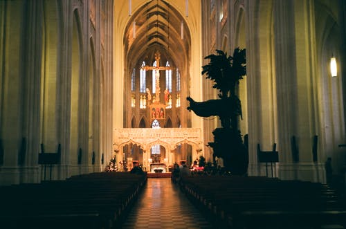 Interior of catholic cathedral with benches and ornamental arches
