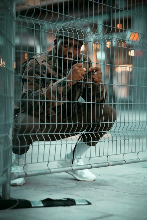 streetphotography, 人, 加拿大, 動物 的 免费素材图片