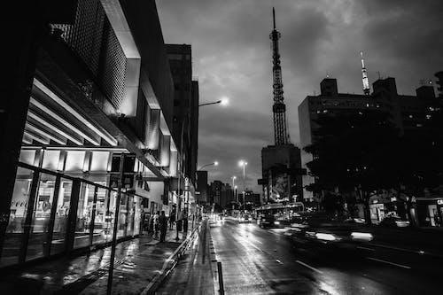 คลังภาพถ่ายฟรี ของ กลางคืน, ขาวดำ, ความคมชัด, ดราม่า