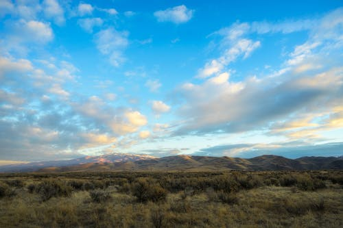Majestic scenery of dry grassy meadow near hills against picturesque cloudy blue sky at sunset