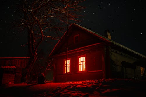 Exterior of a Haunted House near a Bare Tree