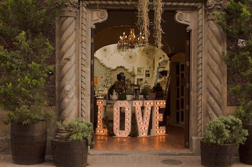 墨西哥, 愛, 釀酒 的 免费素材照片