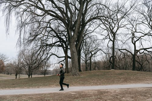 Side view of unrecognizable young male athlete in activewear running on path near leafless trees during training in autumn park in cloudy morning