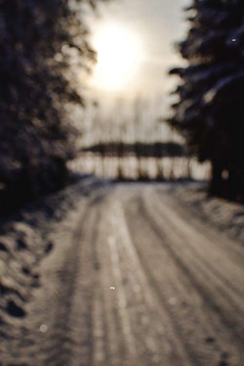 가벼운, 경치, 길의 무료 스톡 사진