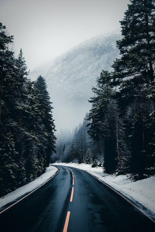 Empty asphalt roadway surrounded with coniferous green forest in snowy terrain near mountains under gray foggy sky in winter day