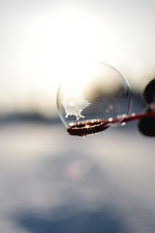 A Close-Up Shot of a Bubble Freezing