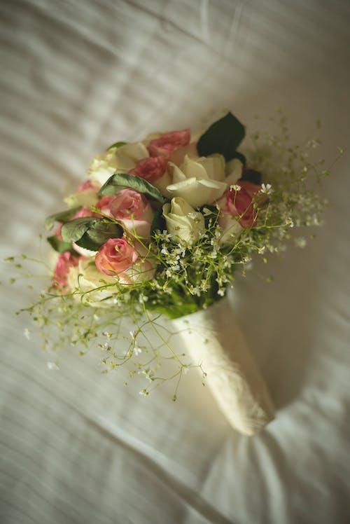 Fotos de stock gratuitas de amor, Boda, bonito