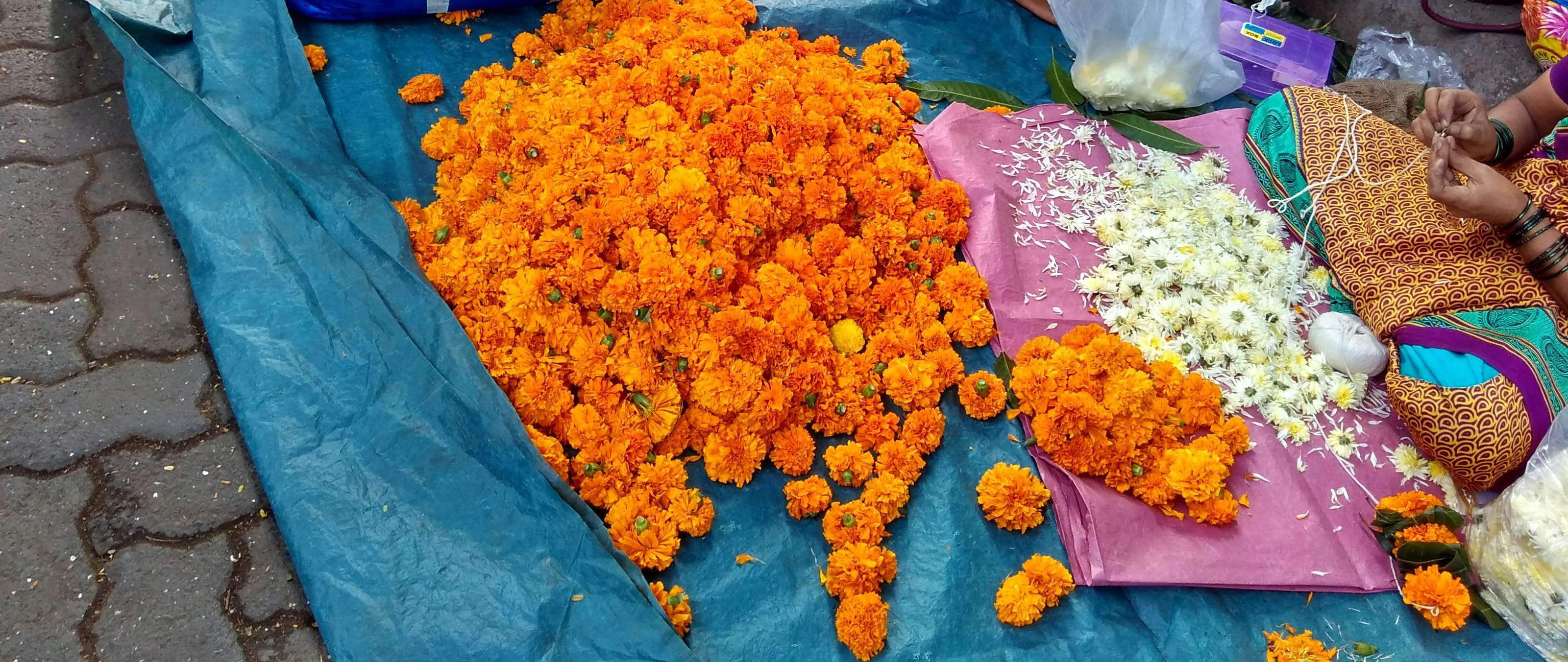 flowers, india, indian