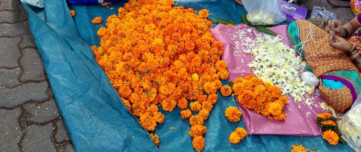 botiga de carrer, flors, indi
