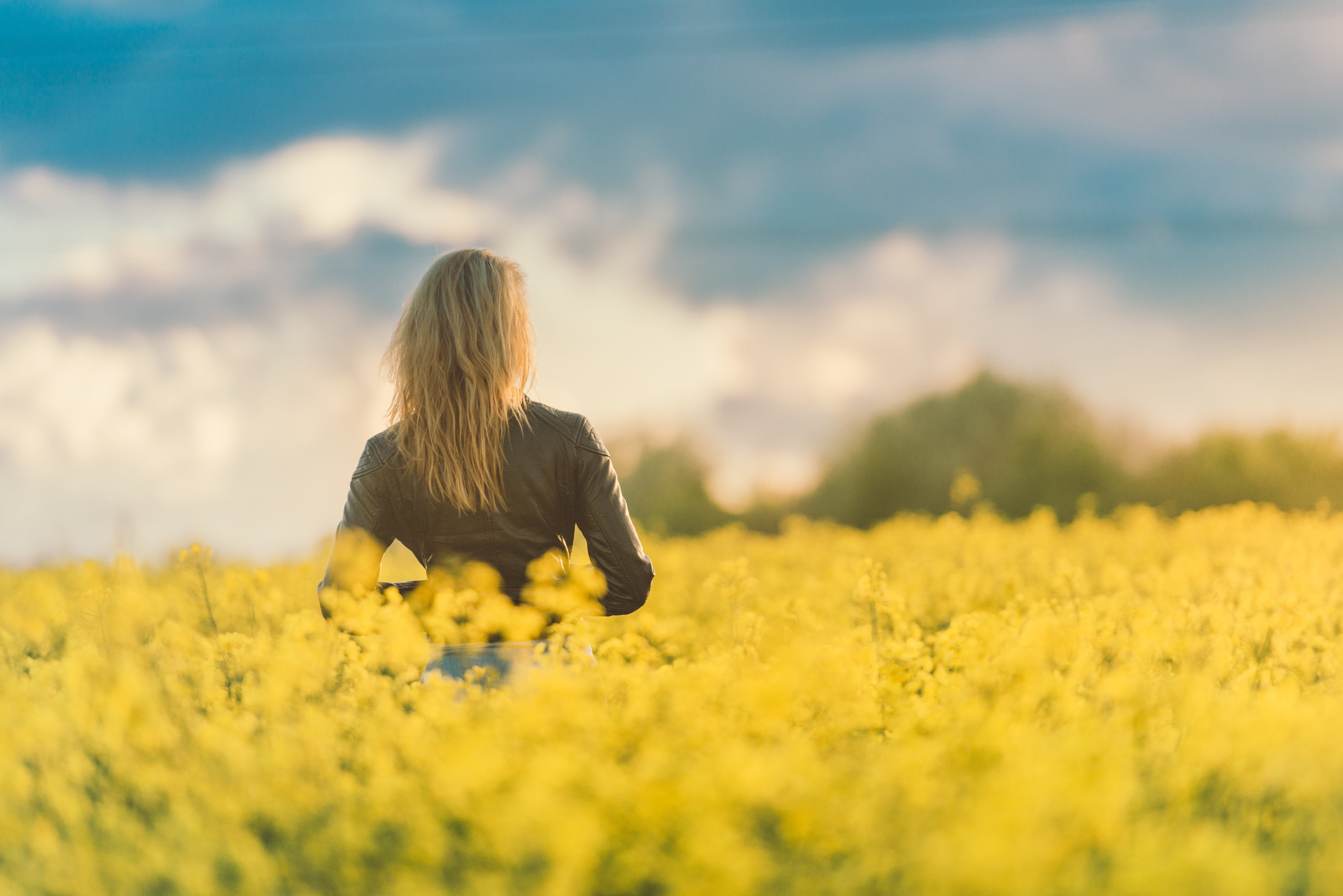 Woman Standing on Yellow Flower Fields
