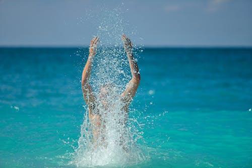 享受, 人, 假日, 假期 的 免费素材照片