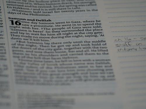 Základová fotografie zdarma na téma bible, blízko zaměření, bokeh, canon