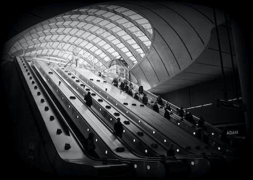 Foto profissional grátis de aeroporto, arquitetura, cidade