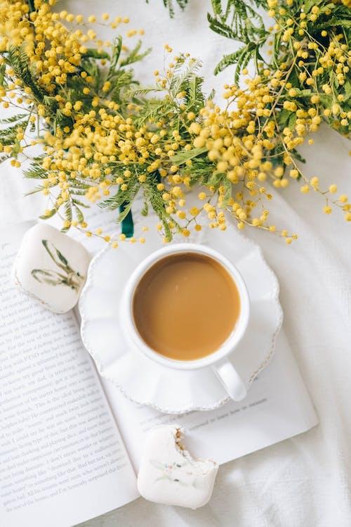 Gratis stockfoto met aromatherapie, bed, bitterkoekjes, blad