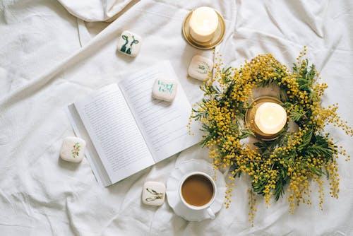 Gratis stockfoto met bed, bitterkoekjes, blad, bloem