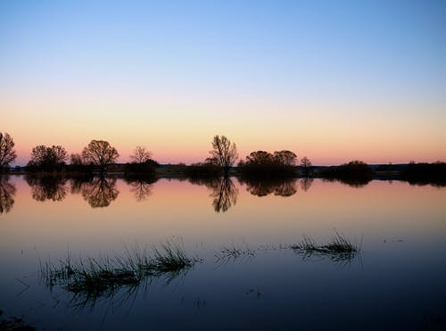 Immagine gratuita di acqua, alberi, cielo, natura