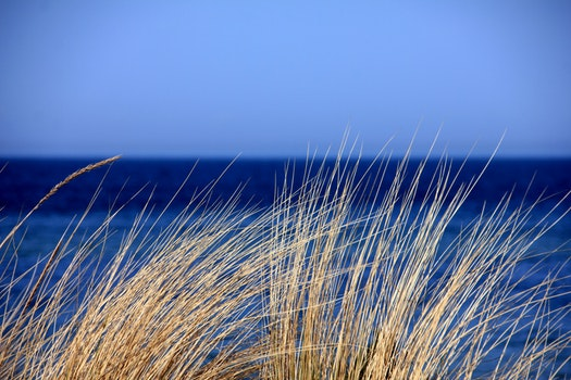 Kostenloses Stock Foto zu meer, natur, wasser, blau