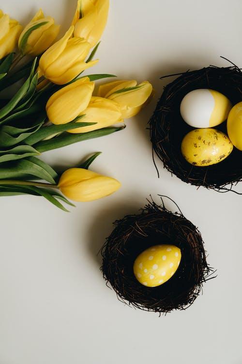 Free stock photo of basket, beautiful, celebration