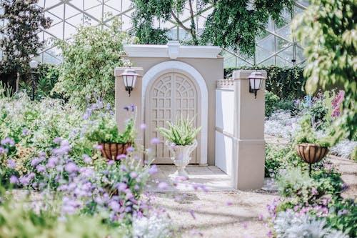 入口, 園藝, 夏天 的 免費圖庫相片
