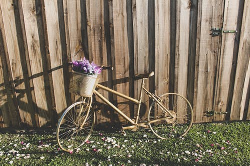 Brown City Bike With Flowers on Green Grass