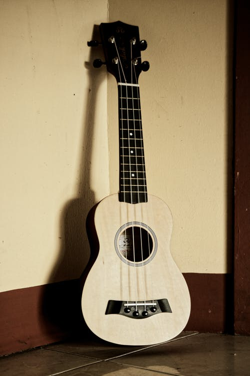 Acoustic ukulele placed in room corner