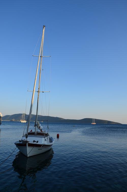 White Sailboat on Sea Under Blue Sky