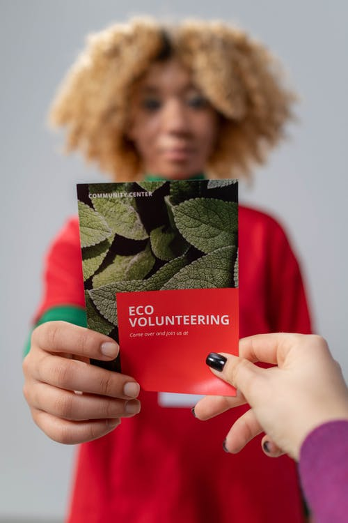 Shallow Focus of Red Brochure