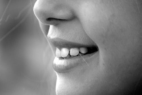 Foto stok gratis gigi, hidung, hitam & putih, hitam dan putih