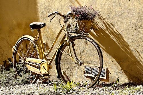 Photos gratuites de ancien, bicyclette, fleurs, mur