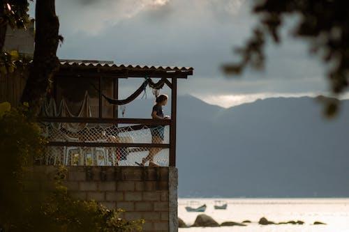 Free stock photo of architecture, beach, bird