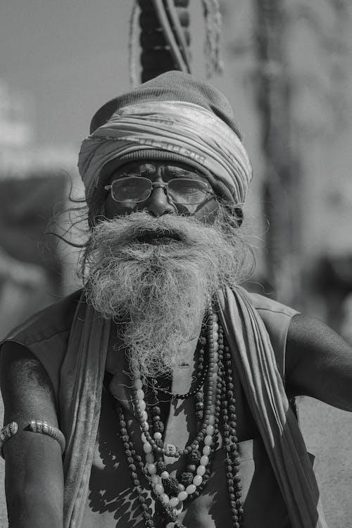 Fotos de stock gratuitas de anciano, apariencia, ariete