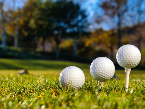Golf Balls on Tees in the Green Grass