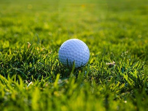 A White Golf Ball on the Green Grass