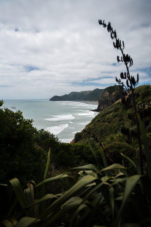 Photos gratuites de bord de mer, ciel, collines