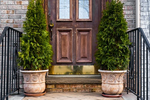 Brown        Wooden Entrance Door with Potted Plants