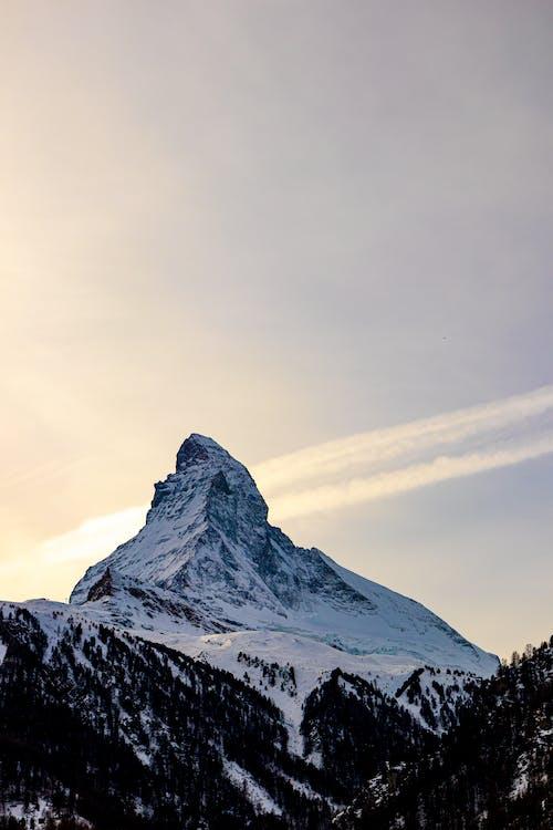 Foto profissional grátis de Alpes Suíços, alto, atraente