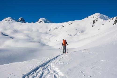 가루, 감기, 겨울, 눈의 무료 스톡 사진