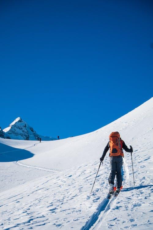 감기, 겨울, 높은, 눈의 무료 스톡 사진