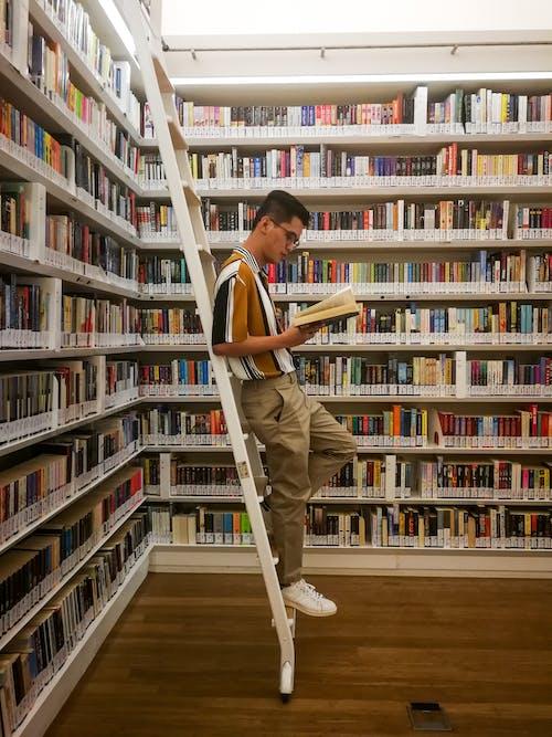 Kostnadsfri bild av bibliotek, bok, bokhandel
