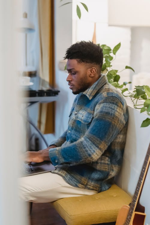 Side view of focused bearded African American guy in checkered shirt sitting near white partition decorated with green plant and working remotely on portable computer